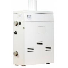 Газовый котел ТермоБар КС-Г-10 ДS